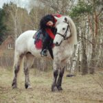 Sps a5GnI3U 150x150 - Нам часто задают вопрос: какие породы лошадей чаще всего используются для верховых прогулок и почему?