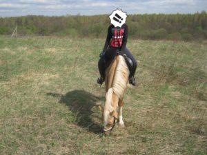 aD2SIsn wk 300x225 - Почему нельзя разрешать лошади опускать голову вниз под седлом?