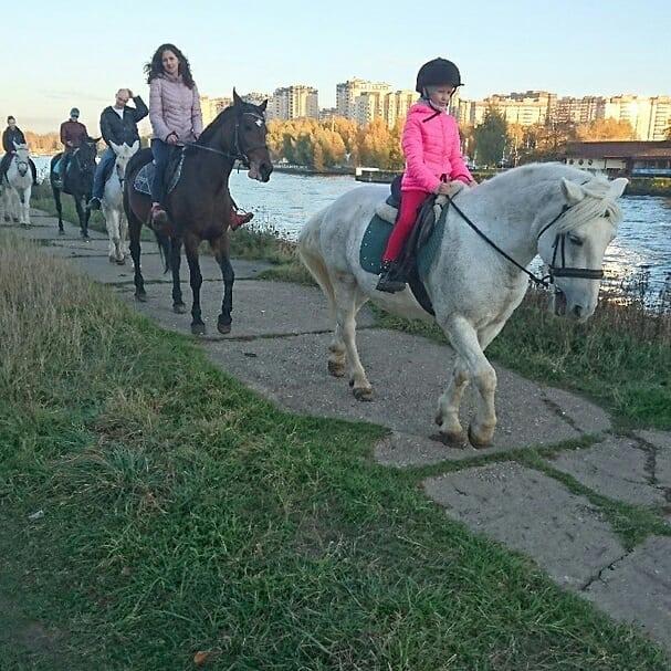 🌞🏇#конныйпрокатхлебниково#верховыепрогулки#верховаяезда#покататьсяналошадях#прокатлошадей#конныепрогулки