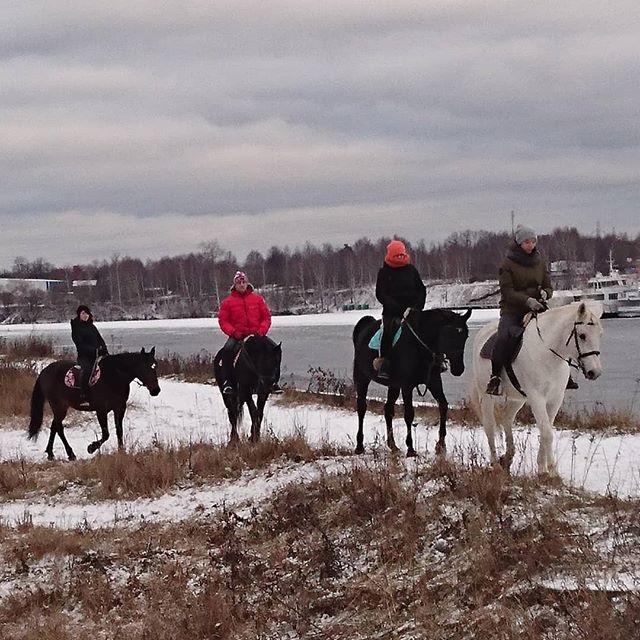 🏇 #верховаяезда#конныйспорт#конныепрогулки#конныйпрокат#прогулкивполя#лошади#кони