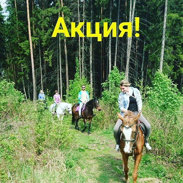 АКЦИЯ  Май! Самый красивый месяц весны! Предлагаем вам насладиться этим прекрасным месяцем на наших конных прогулках. Душистый лес 🌲, цветущие деревья 🌳, поля в жёлтых одуванчиках и море позитива 🤗18 мая — 15.00 — 3 ч/1500 р (для новичков) 19 мая — 13.00 — 3 ч/1500 р (шаг/рысь)