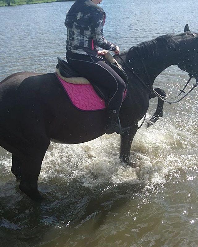 Купальный сезон открыт Темза первый раз зашла в воду, топталась на берегу и не очень понимала чего от неё хотят  Но любопытно же… Правда  стояла в воде и не знала что делать 🤔 А Ляля с Кортиком отрывались по полной 🤗