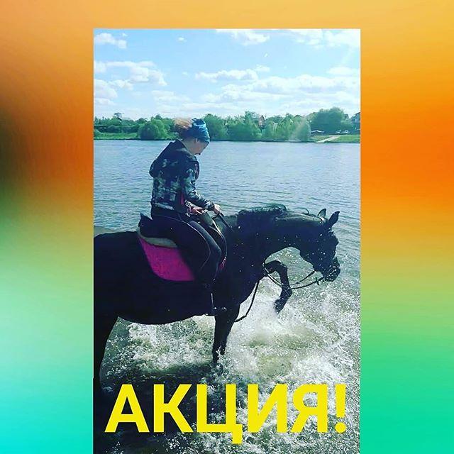 Чудесная погода  и замечательные лошади Надоело сидеть в душных помещениях? Скучно и нечем заняться? Предлагаем вам провести эти выходные весело и с пользой! Солнечные ванны , лесная прохлада , весёлое купание в речке Всё это поднимет вам настроение и возможно, что обзаведётесь загаром , ну или мокрыми ногами  после купания в речке . Так что берите с собой сменную одежду  22 июня 13.00 - 1 ч/500 р17.00 - 2 ч/1000 р23 июня 10.00 - 2 ч/ 1000 р15.00 - 1,5 ч/750 рДети, школьники и студенты - всё лето 500 р/ч