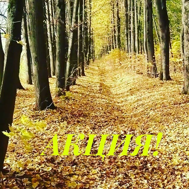 Осень  - это не повод быть унылым и скучать по тёплым денёчкам и солнышку 🌞Ваше настроение могут скрасить прогулки и наши замечательные лошадки 19 октября:10.00 - 1000р/2ч13.00 - 750р/1,5ч15.00 - 500р/1,5ч20 октября:10.00 - 1000р/2ч13.00 - 500р/1,5ч15.00 - 500р/ч