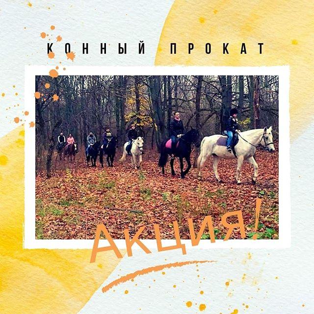 Ноябрь  - последний месяц осени А впереди нас ждёт первый снег  Наши лошадки  тоже ему радуются , как дети!--------------------------------------------------- 2 ноября:13.00 - 1,5ч/750р15.00 - 1ч/500р (можно продлить)3 ноября:13.00 - 1ч/500р (можно продлить)15.30 - 1,5ч/500р4 ноября:ВЕСЬ ДЕНЬ - 1ч/500р--------------------------------------------------- Напоминаем, что: дети (с 6 лет), школьники и студенты - 500р/1ч (в любой день!)А также группы от 5-7 человек - 500р/1ч (за 1 чел.)