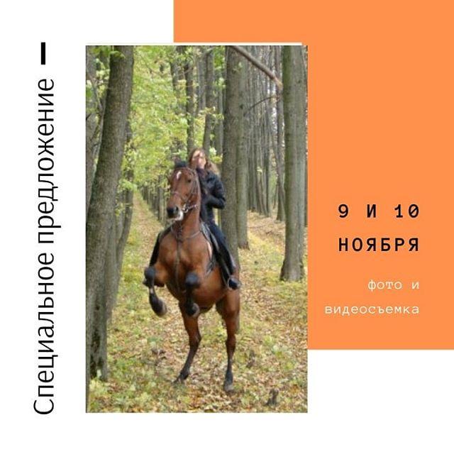 Только для новичков! У вас будет возможность не только поездить на лошади 🏇, но и сделать памятные фото  и видео  вашей прогулки!----------------------------------------------------9 ноября - 13.00 - 1,5ч/500р10 ноября - 15.00 - 1,5ч/500р