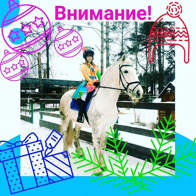 Внимание! Внимание! 22 декабря на территории КСК Шереметьевские конюшни состоятся соревнования. Будет весело и всадникам, и гостям. Соревнования костюмированые Вам предоставляется возможность поучаствовать в настоящих соревнованиях на наших лошадях! Кавалети (движение лошади по заданному маршруту с переступанием жердей) - могут принять участие всадники с любым уровнем потготовки. Для детей и совсем слабых всадников возможно прохождение маршрута с коноводом. Конкур - для уверенно ездящих всадников, имеющих минимальный опыт в преодолении препятствий. Высота маршрута 40 см.⠀Для зрителей и всех желающих будут организованы конкурсы с подарками. Будет очень вкусный глинтвейн из домашнего вина, натуральная чача, шашлыки и вкусная закуска. Ждём всех в гости! Будет организован отдельный конкурс НА ЛУЧШИЙ КОСТЮМ, в котором могут принять участие все желающие, даже просто гости!!!! Приходите красивыми, отдохните, зарядитесь энергией для подготовки к Новому году!!!!Стартовый взнос - 2300 (включает в себя: аренда лошади + участие в одном старте).Обязательна предварительная запись (количество мест ограничено).Тел. для записи и справок: 8-915-355-86-26