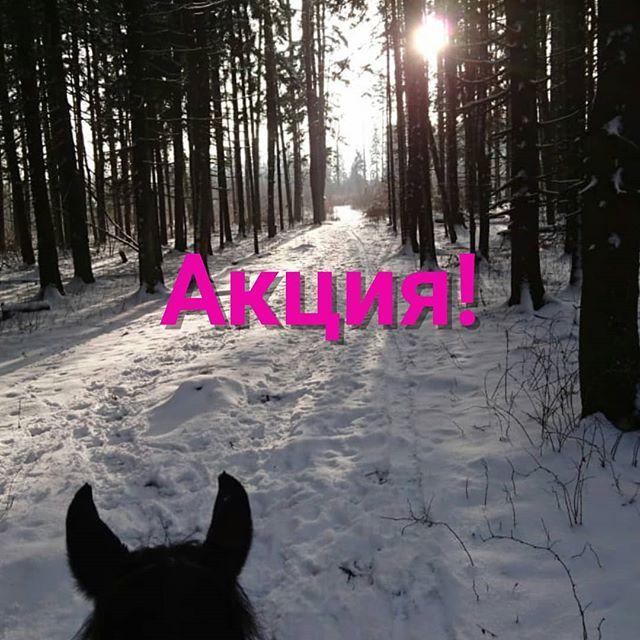 По просьбам желающих и тех, кто не успел записаться в прошлые выходные.Отдохните душой на наших прогулках! Чудесные лошади, снежный леси отличная компания!🏇 8 февраля:10.00 - 3ч/1500р (для ездящих рысь/галоп)13.00 - 1ч/500р🏇 9 февраля:13.00 - 1,5ч/500р15.00 - 1ч/500р